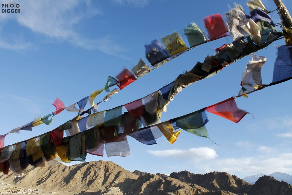 Flags of Leh